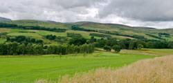 Image showing nav-link to Culcrieff Golf Club.