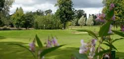 Image showing nav-link to Haggs Castle Golf Club.