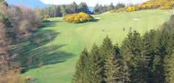 Image showing nav-link to Hawick Golf Club.