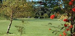 Insch Golf Club information anf facilities
