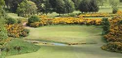 Image showing nav-link to Jedburgh Golf Club.