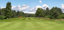 Image showing nav-link to Ladybank Golf Club.