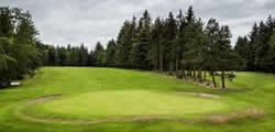 MacKenzie Championship Golf Course information and facilities