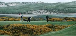 Newburgh on Ythan Golf Club information and facilities