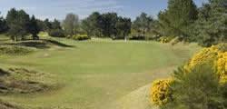Image showing nav-link to Scotscraig Golf Club.