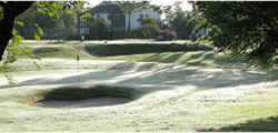 Image showing nav-link to The Williamwood Golf Club.