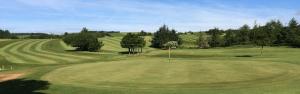 Ardeer Golf Club Featured Image.