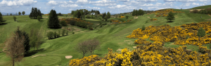 Beith Golf Club Featured Image.
