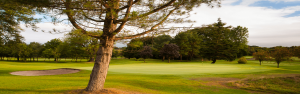 Bishopbriggs Golf Club Featured Image.