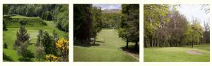 Dalmuir Municipal Golf Course Featured Image.