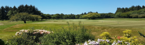 Downfield Golf Club Featured Image.