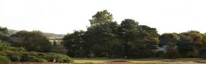 Fullarton Golf Course Featured Image.