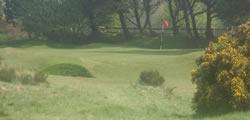 Image showing nav-link to Irvine Ravenspark Golf Club.
