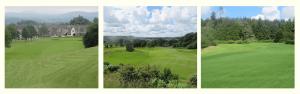 Newton Stewart Golf Club Featured Image.