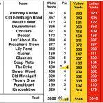 Newton Stewart Golf Club Scorecard.