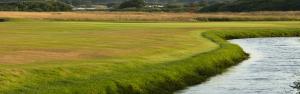 Prestwick Golf Club Featured Image.