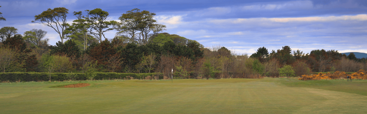 The Balgove Course Featured Image.