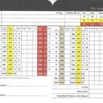 St Andrews Links New Course Scorecard.