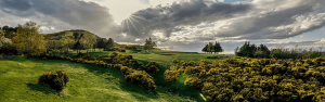 Swanston Golf Club Featured Image.
